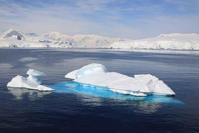 Découvrir le 7ème continent via la croisière Antarctique
